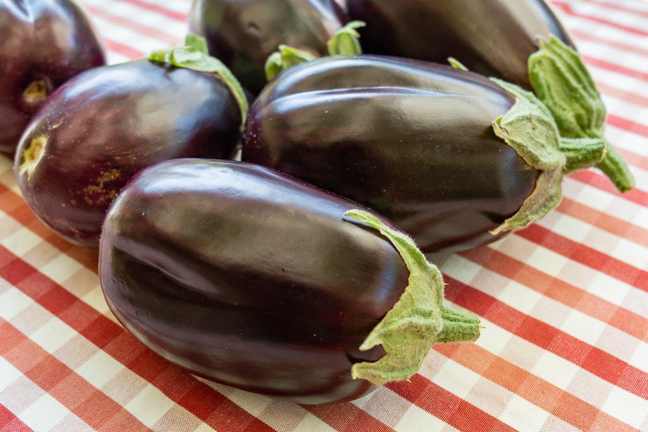 Nyplockade auberginer från Olles trädgård