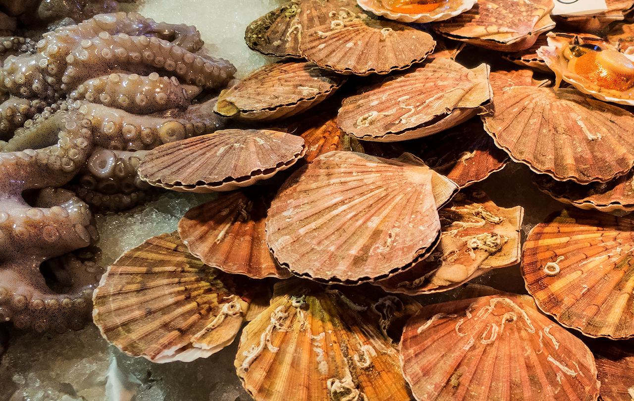 Skaldjur på fiskmarknaden i Venedig